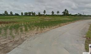 ที่ดิน 30 ไร่ ปลูกมันสำปะหลัง อ.บ้านฉาง จ.ระยอง ราคาไม่แพง ใกล้ชายหาด