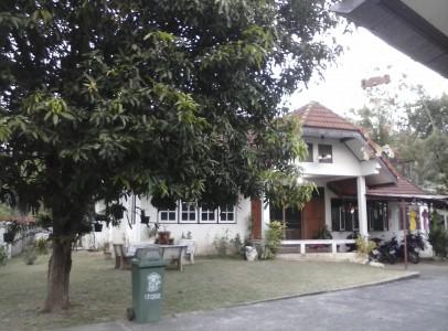 CAM01261