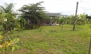 ขายที่ดิน 234 ตารางวา เหมาะสำหรับทำเป็นบ้านพักอาศัย เงียบสงบ
