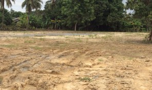 ที่ดิน 2 ไร่ 45 ตารางวา ถมเรียบร้อยแล้ว เหมาะสำหรับสร้างบ้าน อำเภอสันทราย เชียงใหม่ ราคาถูกมาก