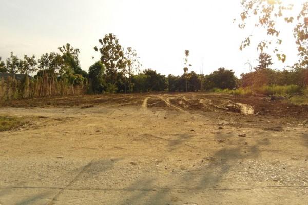 ที่ดินเปล่า 200 ตารางวา ราคา 1 ล้านเศษ ต.ขุนคง อ.หางดง จ.เชียงใหม่ ถมเรียบร้อยแล้ว สำหรับปลูกบ้านพัก เงียบสงบ เดินทางสะดวก