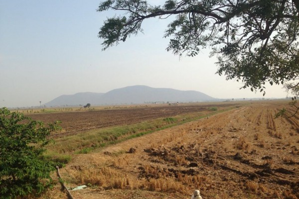 ที่ดินเปล่า 155 ไร่ เป็นที่นา ติดถนนพหลโยธิน ต.เขาท่าพระ อ.เมือง จ.ชัยนาท ด้านหน้ากว้าง 200 เมตร ทำเลสวย